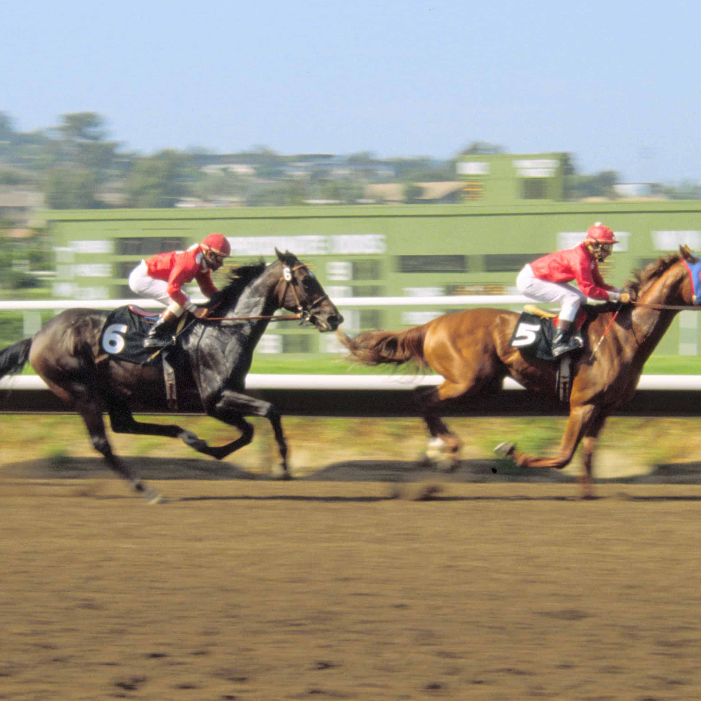horse_racing_at_the_del_mar_racetrack_in_del_mar_ca