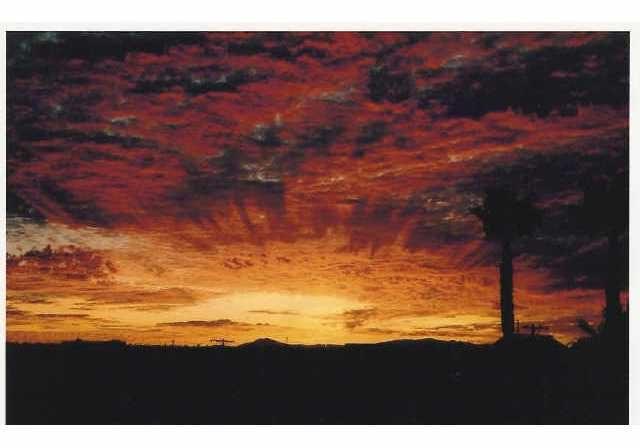 sunrise lamont